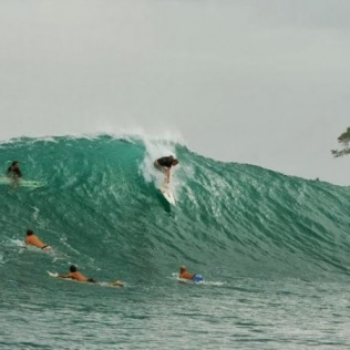 surf pic 4
