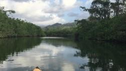 portobello kayaking 2