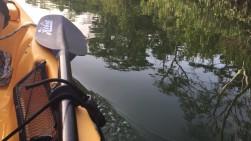 portobelo kayaking