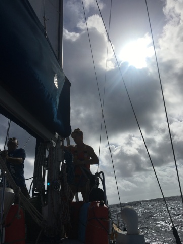 up the mast 2